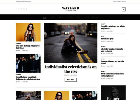 Waylard WordPress Theme