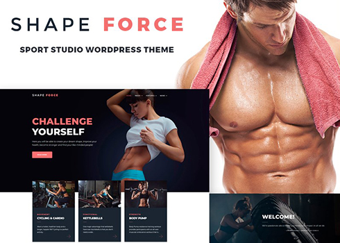 ShapeForce