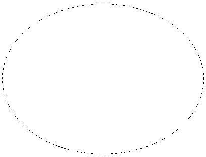 seg em elliptical trainer 3236