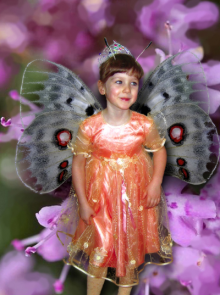How to Make a Fairy Collage