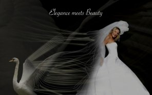 Creating a \'Swan Bride\' - Fun With Paths!