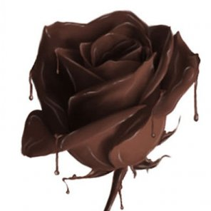 Rose from Chocolate!