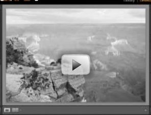 Grayscale Photographs in Lightroom (Video Tutorial)