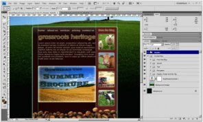 Design a Warm Nature Website Layout: a Photoshop Tutorial
