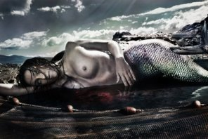 Story of a Dying Mermaid
