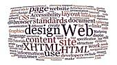 Why Professional Web Design is Always Better