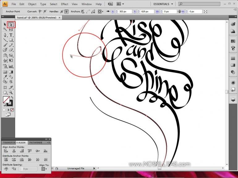 Calligraphy with Photoshop and Illustrator | Adobe Illustrator