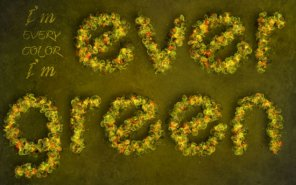 Fantasy Spring Text Effect