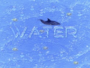 Create a Splendid Water Text Effect Using Photoshop
