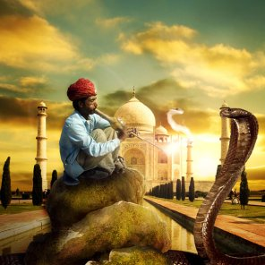 Photo Manipulate an Exotic Snake Charming Scene