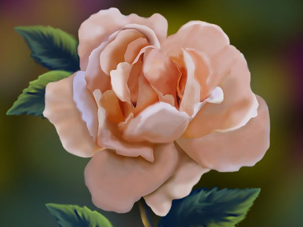 Digital Painting Of A Rose From Scratch
