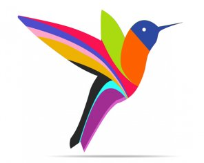 Make Colorful Humming Bird Vector in Photoshop