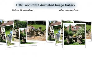 How to Create an Animated Image Gallery Using HTML and CSS3