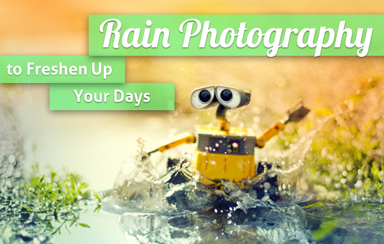 Rain Photography to Freshen Up Your Days