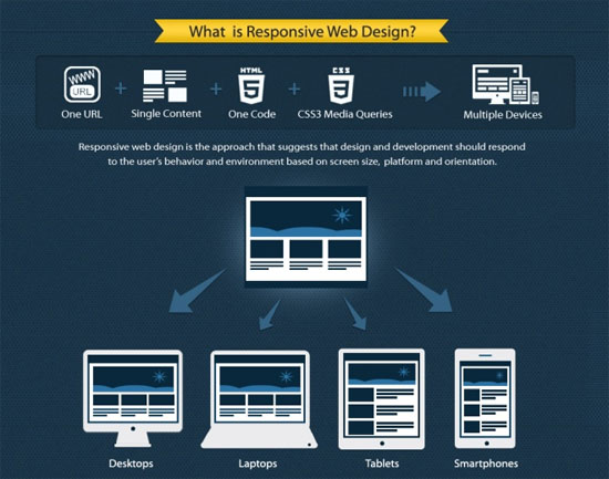 Responsive Web Design 101 Get To Know More About Responsive Web Design Web Design Principles