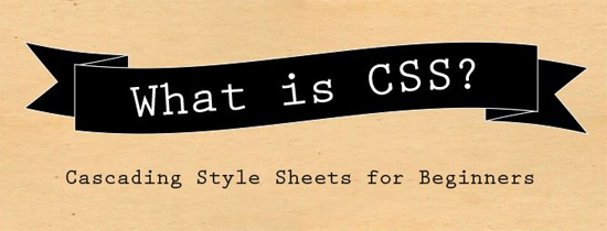 HTML for Beginners: CSS (Part 9)