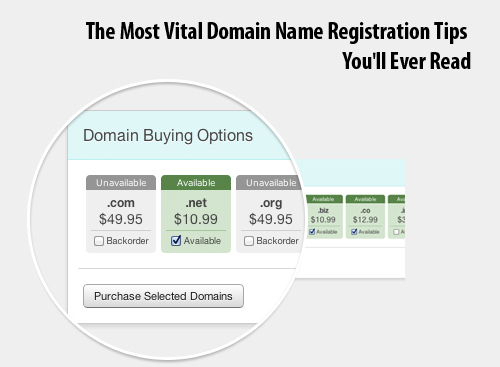 The Most Vital Domain Name Registration Tips You'll Ever Read