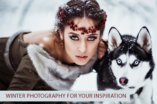 Winter Photography for Your Inspiration