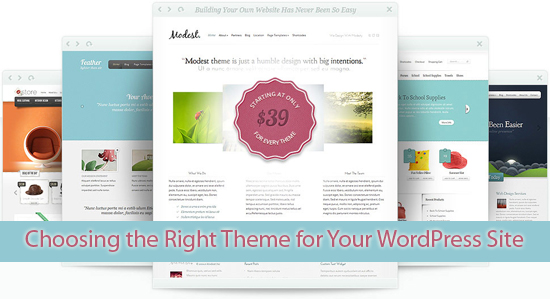 Choosing the Right Theme for Your WordPress Site