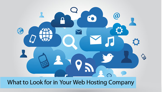 What to Look for in Your Web Hosting Company