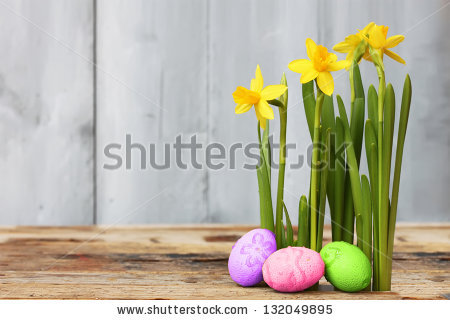 Cute photo with easter eggs and daffodils