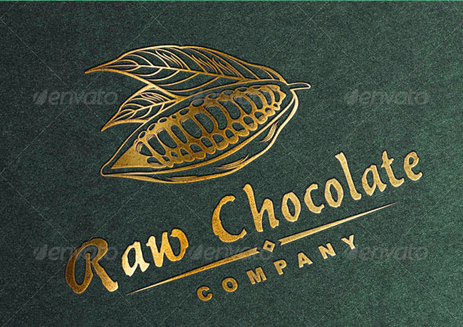 food logo Raw Chocolate Logo Template