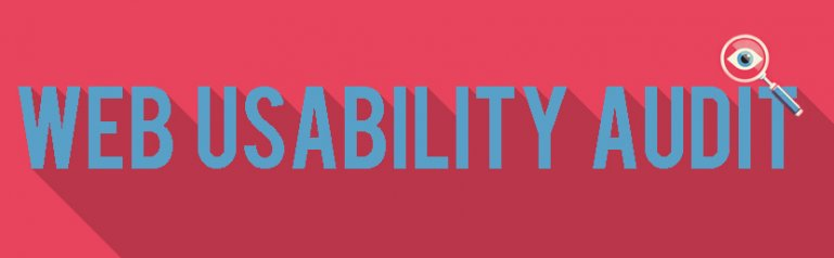 Web Usability Audit