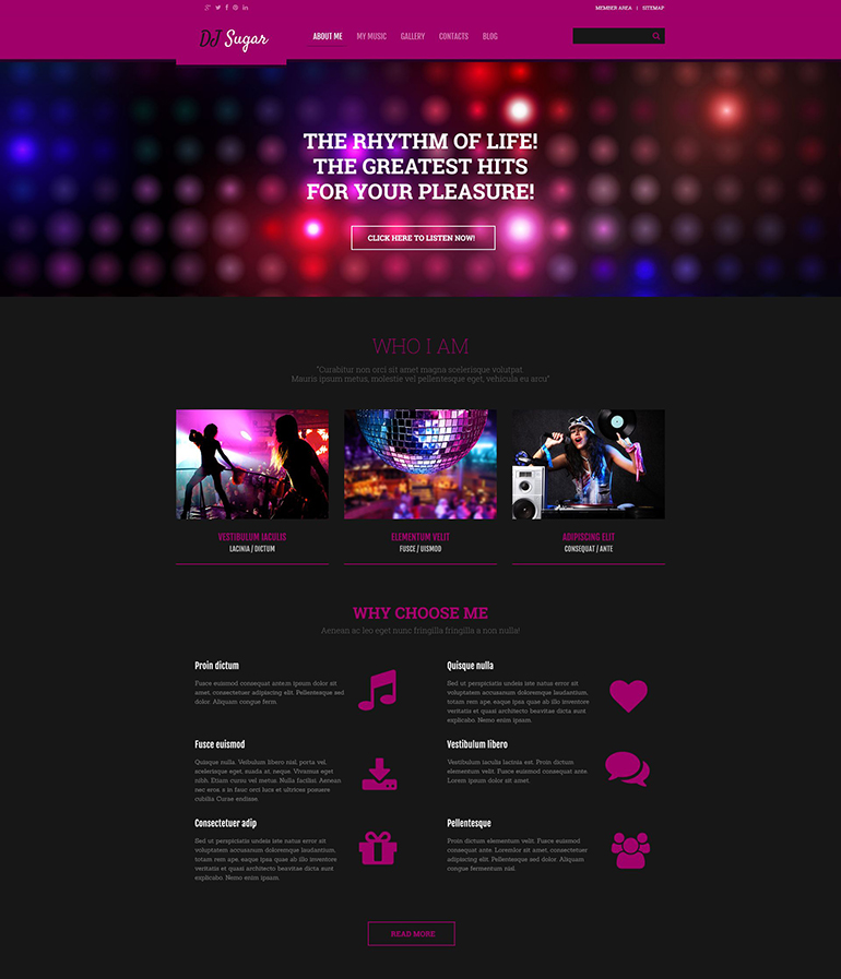 The Best Music WordPress Themes for 2016 | Web Template Customization
