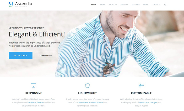 business wp theme