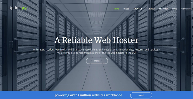 hosting wp theme
