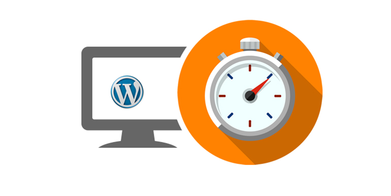 The Need for Speed - Choosing the Right WordPress Design, Plugins and Hosting