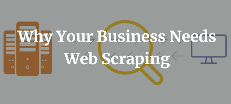 Why Your Business Needs Web Scraping