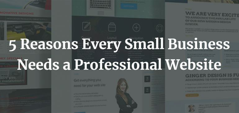 5 Reasons Every Small Business Needs a Professional Website