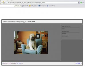 Creating Web Photo Gallery with Photoshop