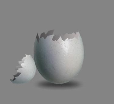 egg_13.jpg