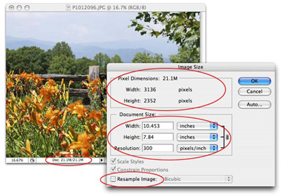 The Reality of Resizing: Changing Image Resolution without Changing Quality